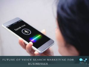 Voice search optimisation
